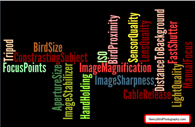 Wordle Depicting The Issues That Impact Tack Sharp Photos